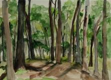 through-the-trees