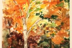 movement-of-fall